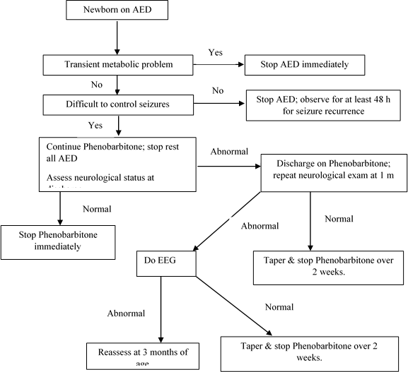 Figure 2: Strategy to wean off AED in neonates