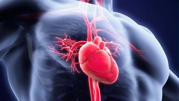 Rheumatic Fever (RF) And Rheumatic Heart Disease (RHD)
